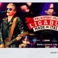 10 cose che scopri al concerto di Ligabue